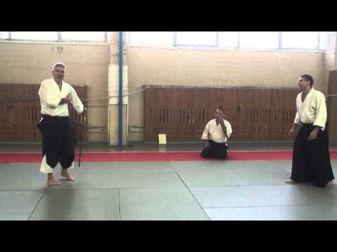 Moscow Aikido Seminar 24 Nov 2013 Paul Muller