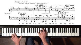 """Bach """"Air on the G String"""" (arr. Siloti) Paul Barton, FEURICH piano"""