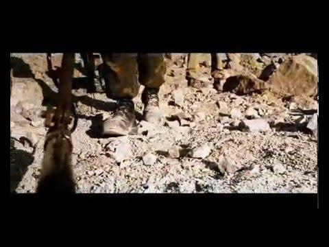 Еврейские анекдоты. «Рота солдат купается в реке…»