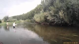 Fly fishing, р Чермасан