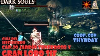 Dark souls: Guia hechicero #18 | Jardin tenebroso y lobo Sif | Cooperativo con Thyrdax