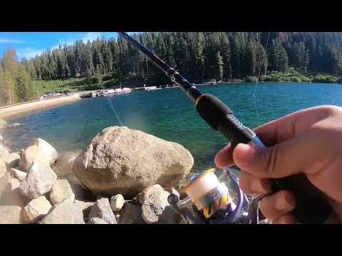 Lake Tahoe Fishing, Trout Farm.