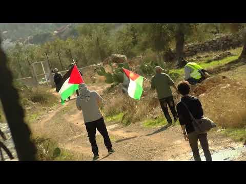 Ni'lin, West Bank, 8,12,2017