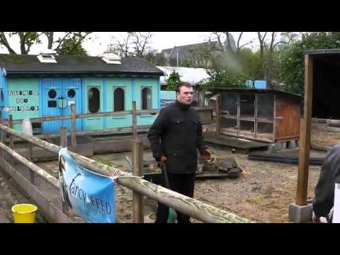 Volunteering at Spitalfields City Farm - Wilf's Story (short version)