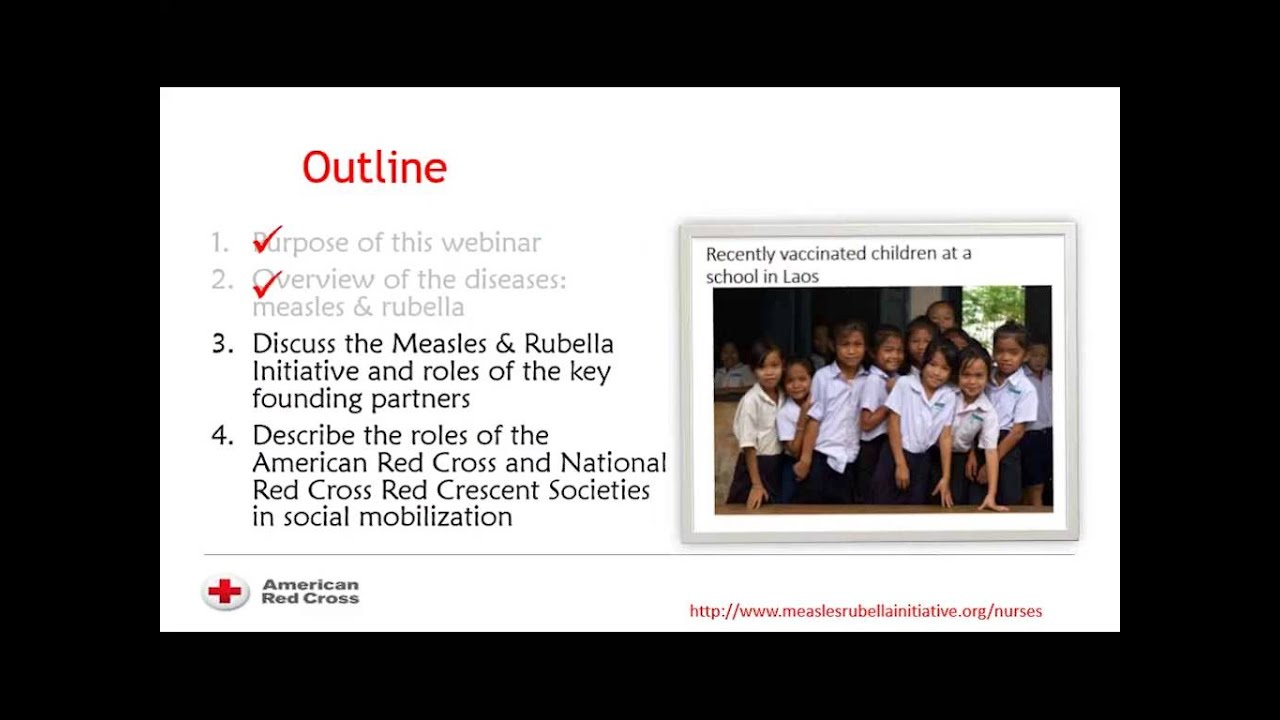 measles rubella initiative national nurses committee measles rubella initiative national nurses committee