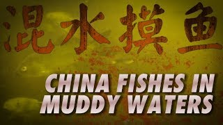 China Fishes in Muddy Waters Video