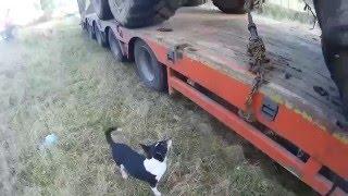 Harvester na lawecie + mały  pomocnik
