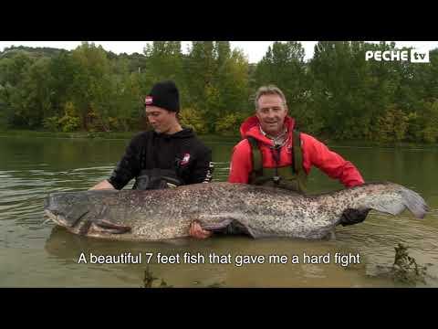 Globe Fishing 47 (Saison 2) 2/6 - Pêche du silure sur la Garonne (Pêche TV) - Version sous-titrée