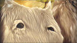 MTV Czech Republic: Ident - Close and Caring/The Furry Family (July 2011)