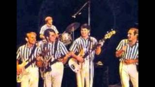 I tried to cover the fan fan fan of the Beach Boys. Thank you for l...