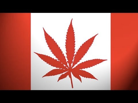 As Canada Legalizes Marijuana the US Tightens Border Controls