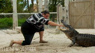 The Seminole Tribe Perfected Alligator Wrestling   The New Yorker Documentary