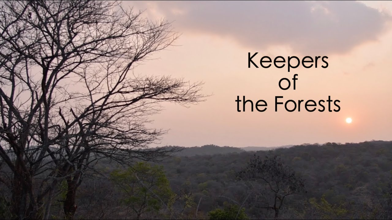 Keepers of the Forests