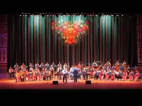 Национальный Оркестр Народных Инструментов