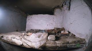 «Застывшее время»: куда исчезли за столетие 6000 жителей села Нижняя Матренка?