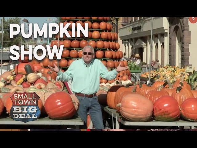 The Pumpkin Show