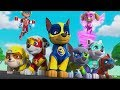 Paw Patrol Mission Paw - Mighty Pups Ultimate Rescue Team: Ryder, Skye, Zuma - Fun Pet Kids Games