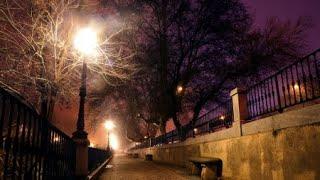 서울 가로등 어두운 곳부터 먼저 켜진다 / YTN 사이…