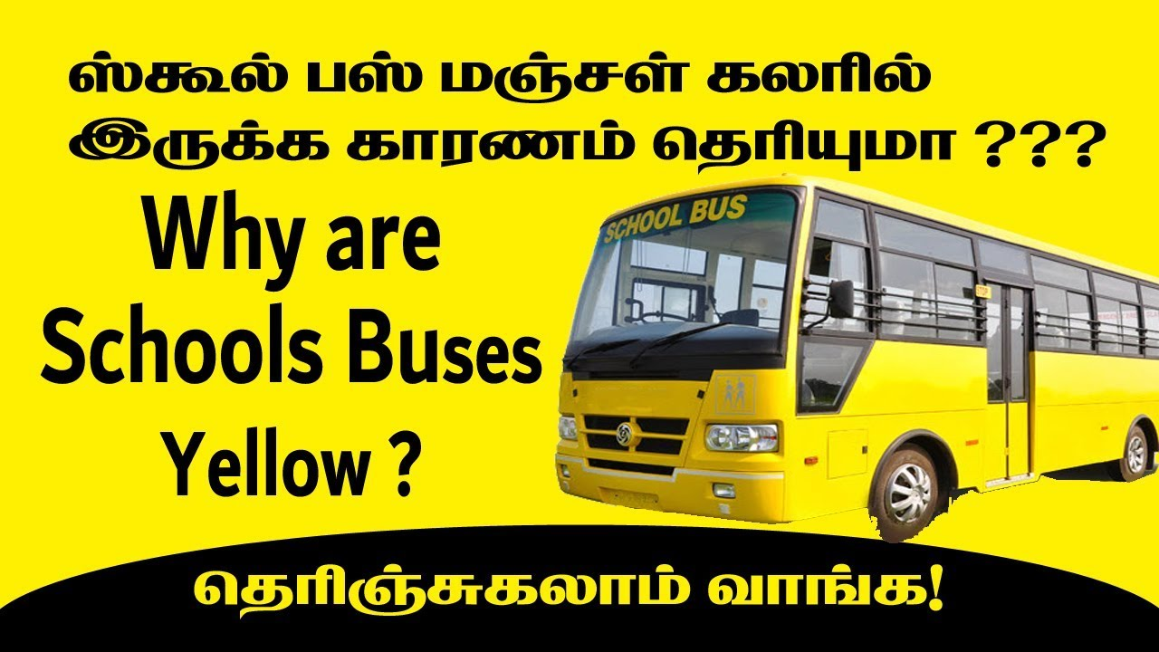 why are school buses yellow color history of yellow color bus