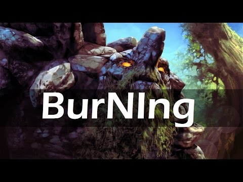 Burning Tiny Stream Webcam and Commentary