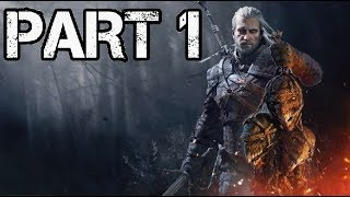 The Witcher 3 Wild Hunt Game of the Year Edition Let's Play Part 1