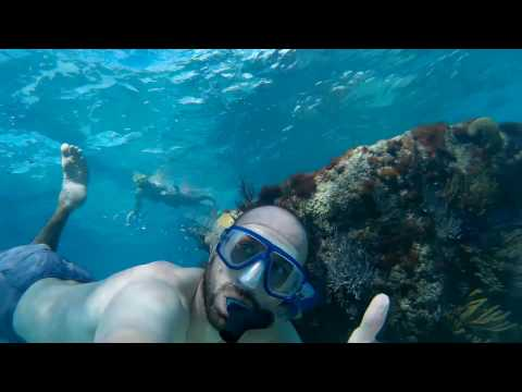 SNORKELING BERMUDA - CHURCH BAY - AERIAL and UNDERWATER FOOTAGE