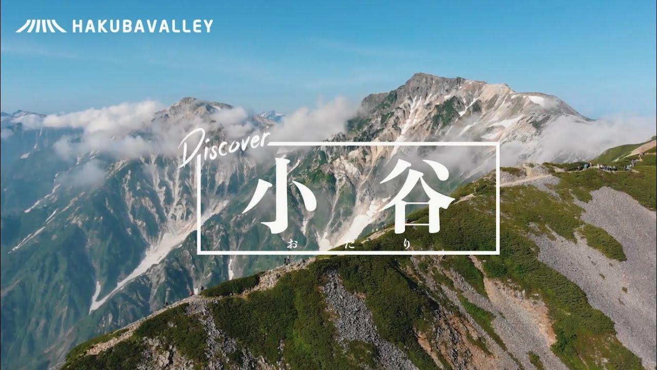 Discover 小谷 - 夏(ロング)