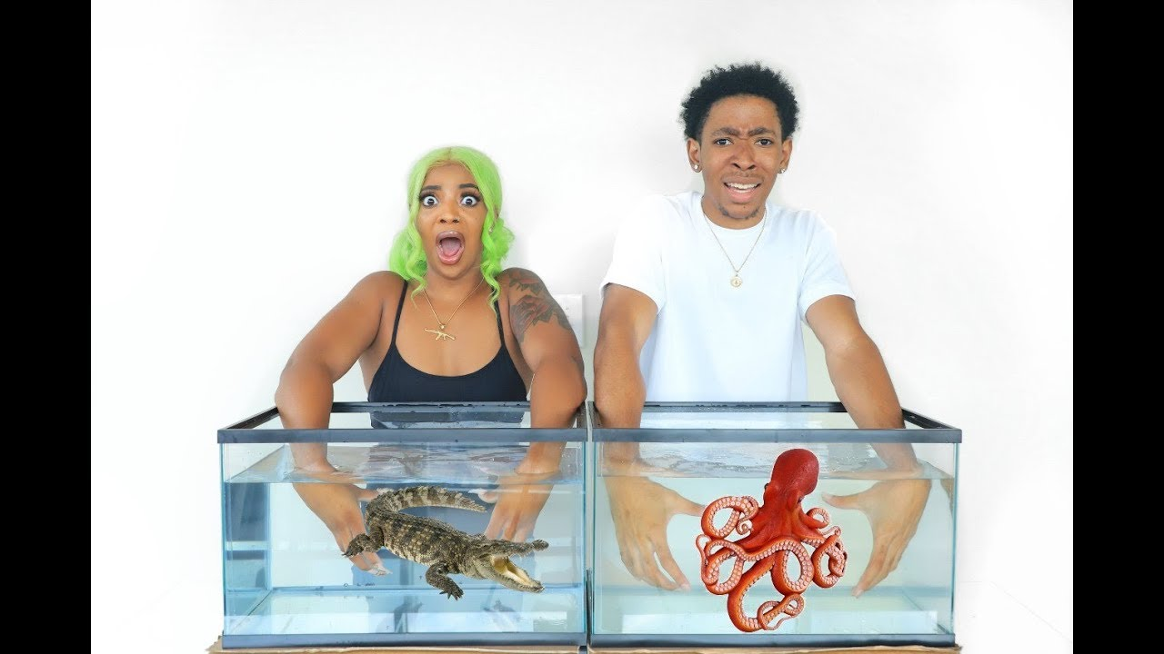 WHAT'S IN THE BOX CHALLENGE - UNDERWATER EDITION *LIVE ANIMALS*