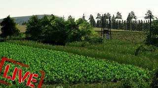 Farming Simulator z Klimatem    LIVE