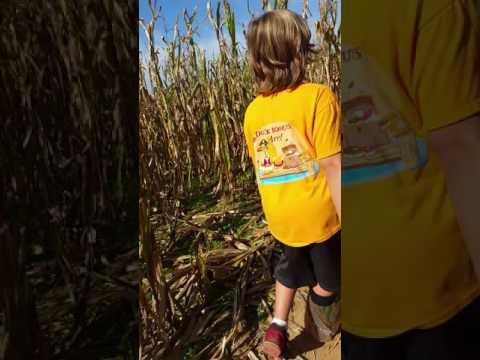 Children of the corn Harry potter corn maze pt. 2