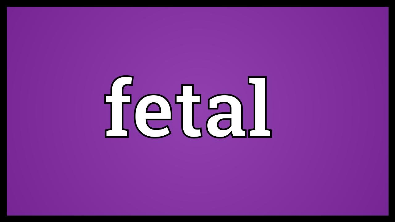 Fetal Meaning - YouTube