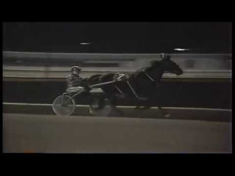 1983 Roosevelt Raceway - Levy Series - My Bill Forwood
