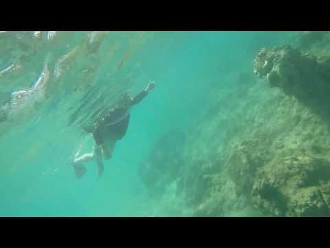 Snorkeling in Maui - June 2017