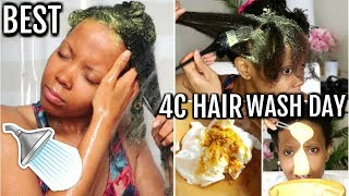 BEST NATURAL 4C HAIR WASH DAY AFTER PROTECTIVE STYLES | DIY HAIR GROWTH PROTEIN TREATMENT |TASTEPINK