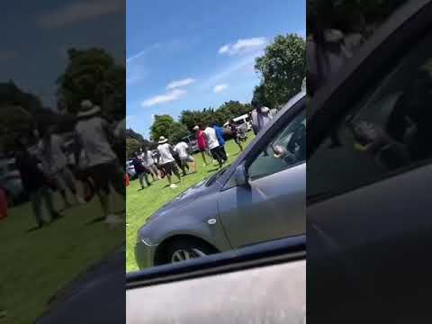 South Auckland Fights