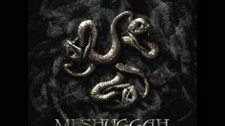 Meshuggah - Sum - Catch Thirty Three