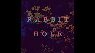 Rabbit hole...