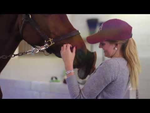 Equestrian California