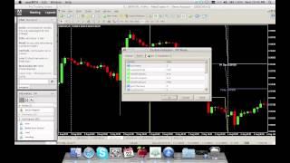 Urban Forex - Pro Trading Strategy Basics