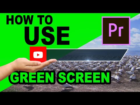 How to use Green screen videos in Adobe Premiere Pro - Basic Tutorial thumbnail