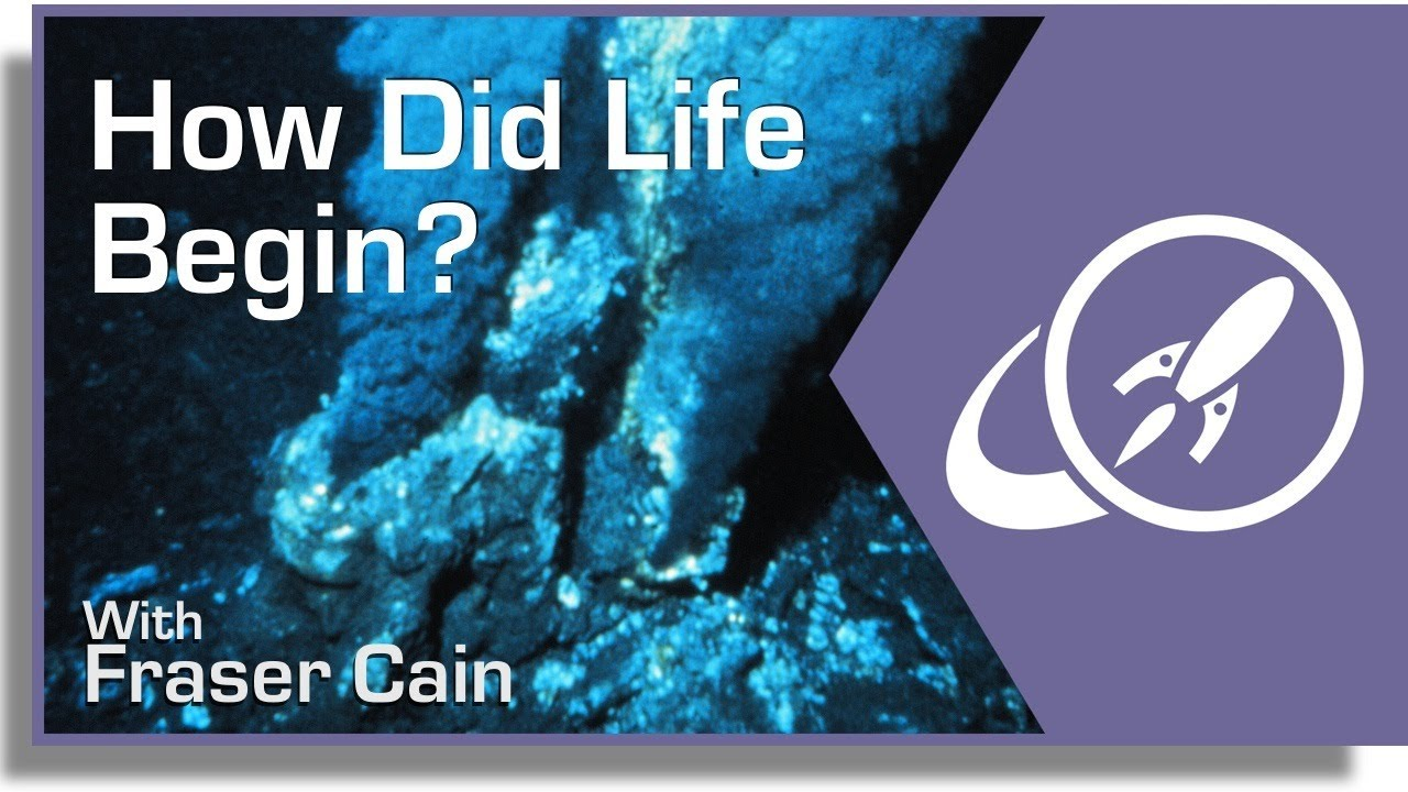 How Did Life Begin? - YouTube