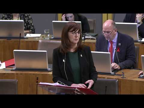 National Assembly for Wales Plenary 29.11.17