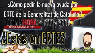 Última hora 💰 Cómo pedir la nueva ayuda por ERTE de la Generalitat de Cataluña.