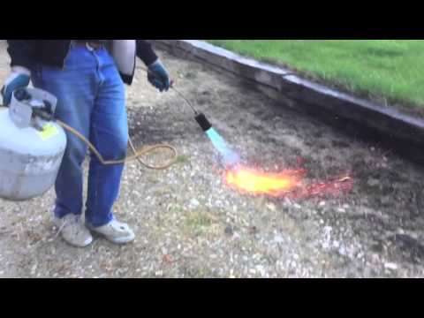 Weed Control With Heat
