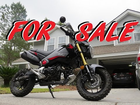 2015 Honda Grom MSX125 'Dual Sport' For Sale