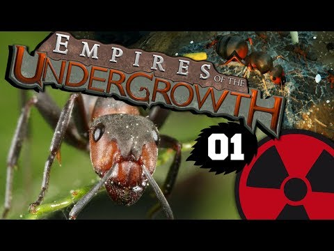 Empires of the Undergrowth #01: Das große Krabbeln ☢ [Lets Play - Deutsch]