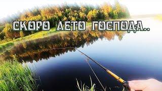 Рыбалка на щуку с берега на реке июнь 2020 года