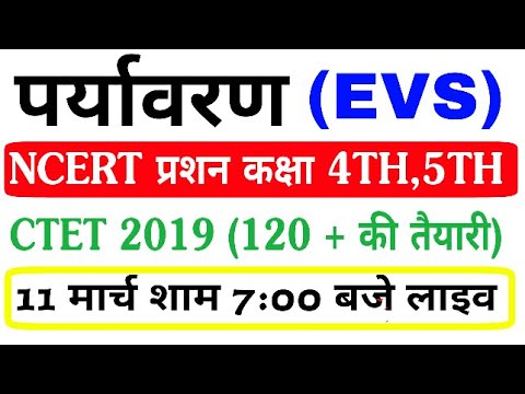 EVS 30 NCERT most important question topic one family CTET 2019 live class