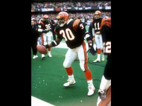 Cincinnati Bengals - The Orange And Black Are Back by Group Effort Productions (1988)
