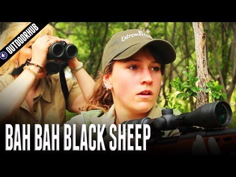 Hunting Hawaiian Black Sheep